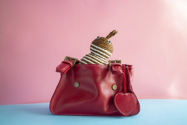 Le sac le plus tendance de cette année